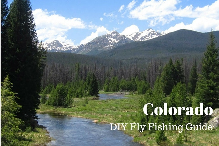 Diy guide to best fly fishing in colorado diy fly fishing for Colorado river fly fishing
