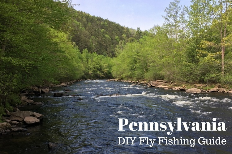 Diy guide to the best fly fishing in pennsylvania diy for Fishing in pennsylvania