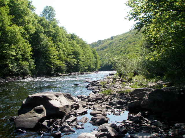 Diy guide to fly fishing the lehigh river diy fly fishing for Fly fishing pa