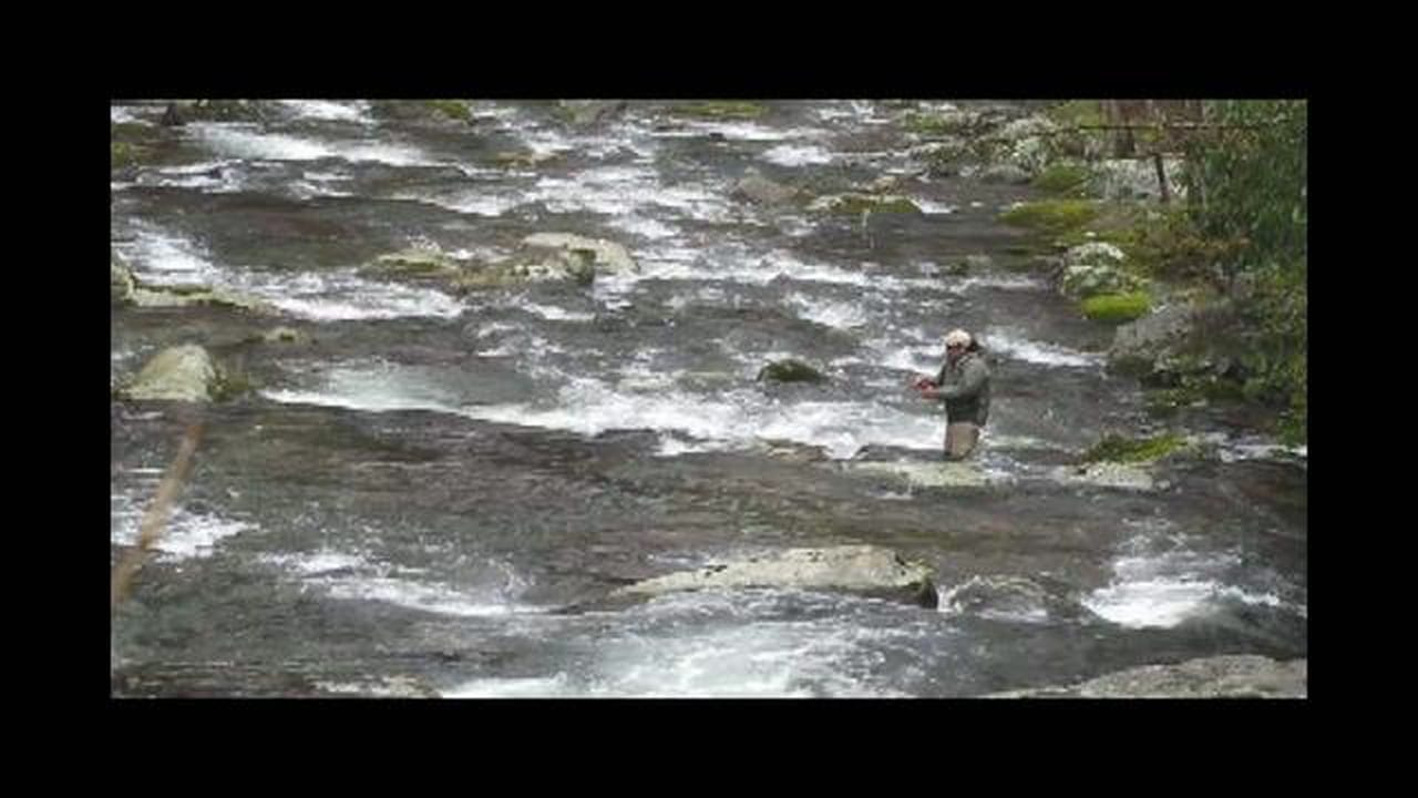 Fly fishing with strike indicators smoky mountain style for Fly fishing strike indicator
