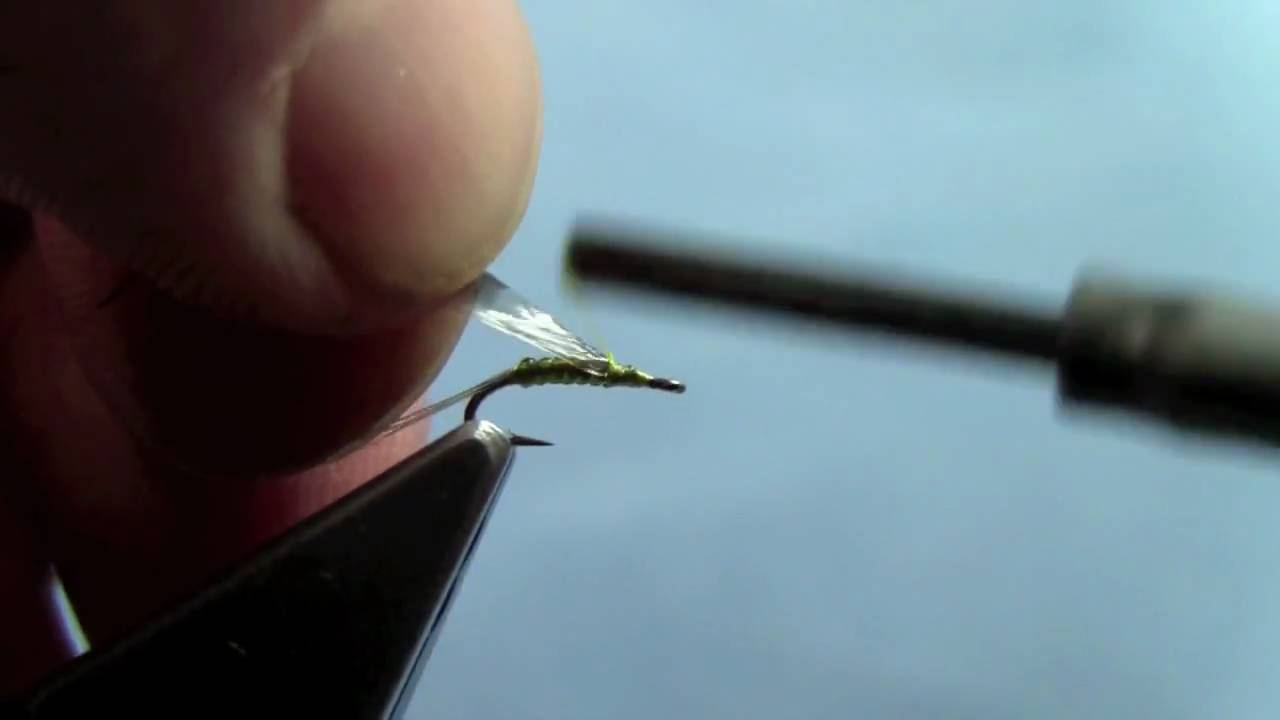 [Video] Killer Mayfly Nymph by Hans Stephenson