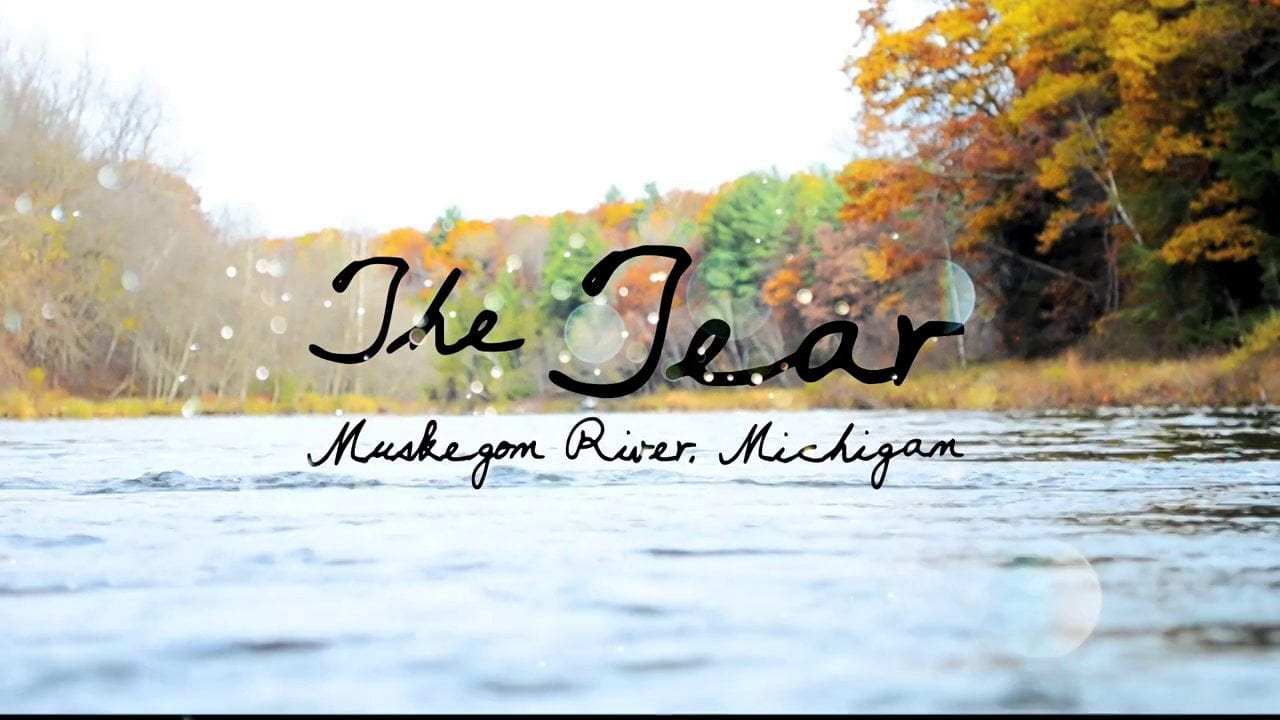 Video muskegon river fall steelhead with riverquest for Muskegon river fishing
