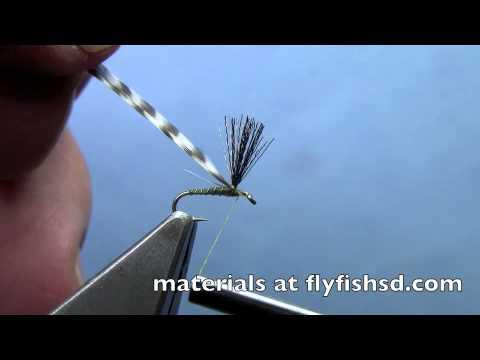 [Video] Sipper Midge by Hans Stephenson