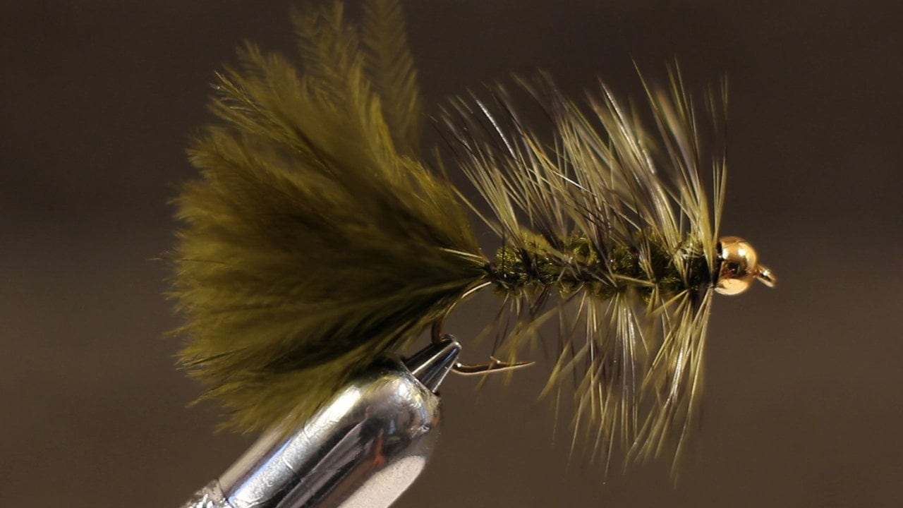Video tying an olive woolly bugger diy fly fishing for Fly fishing tying
