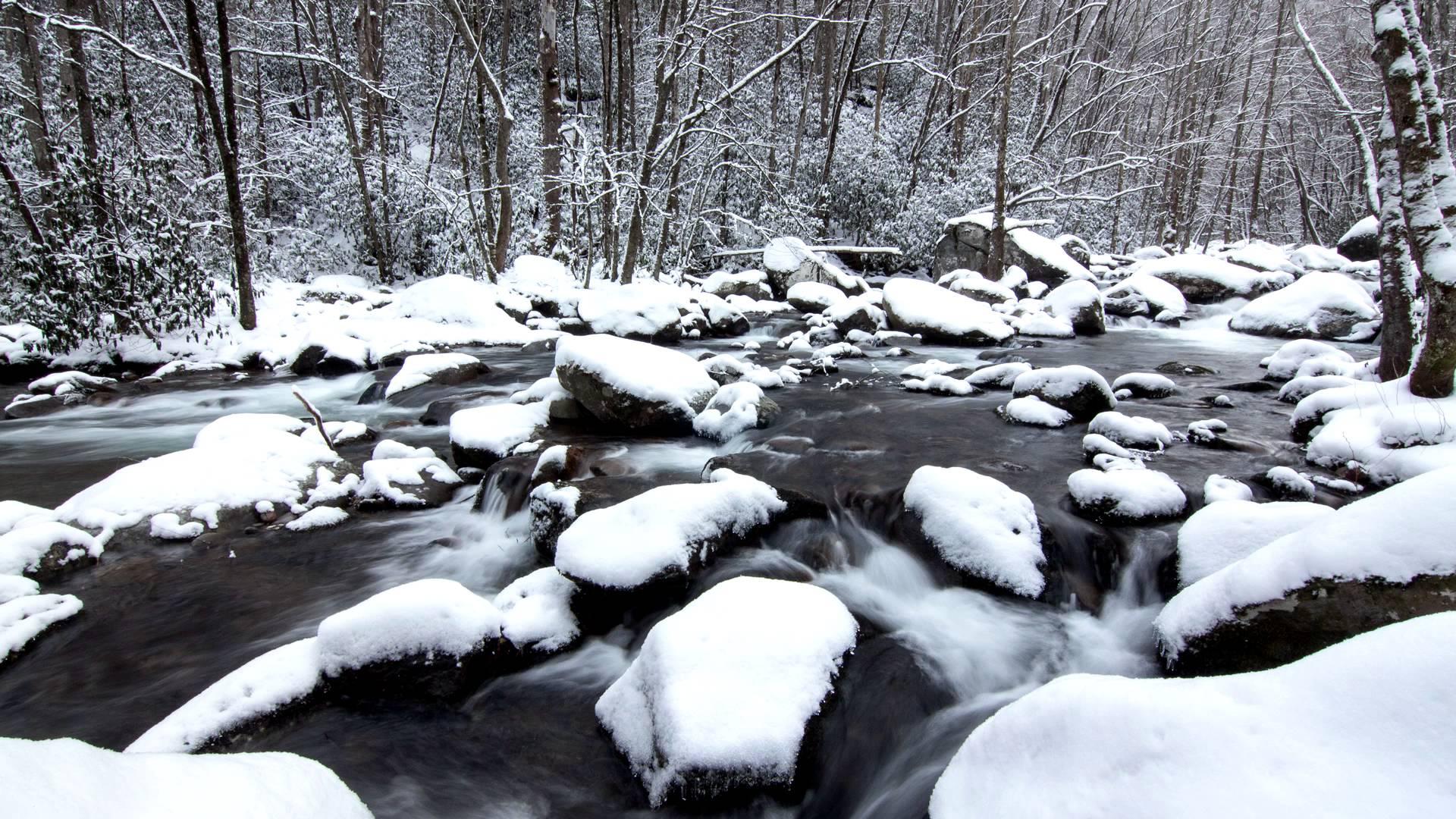 big creek GSMNP