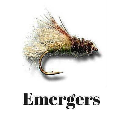 Emergers