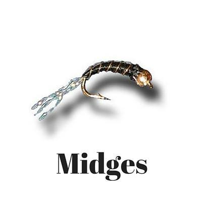 midge patterns