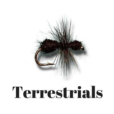 terrestrial fly tying patterns