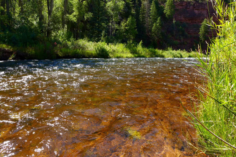 frying pan river colorado
