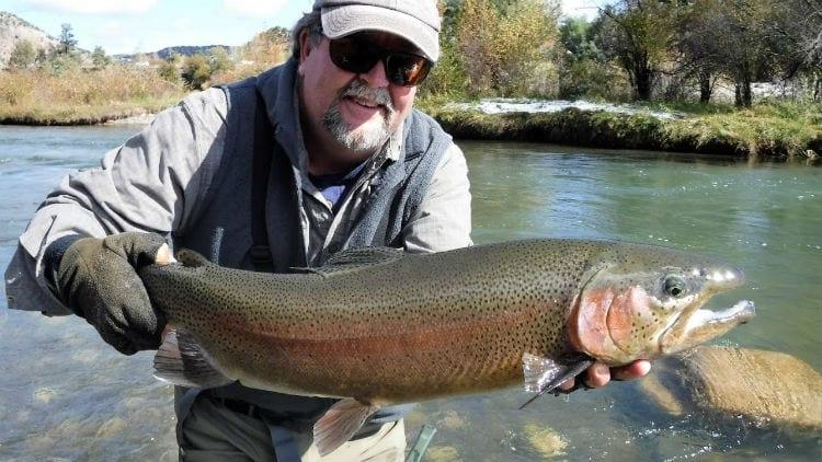 Uncompahgre River rainbow trout