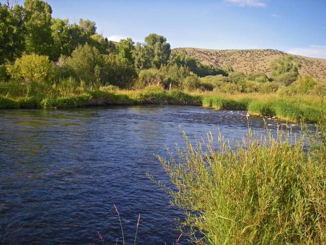 Williams Fork River Colorado