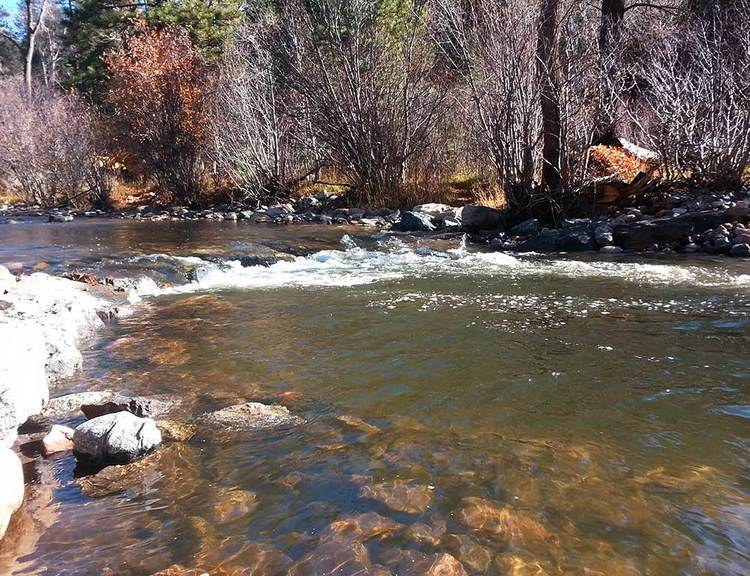 new mexico fly fishing habitat improvement project