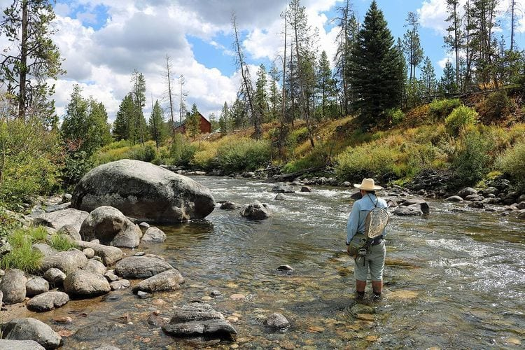 man fly fishing Elk River in Routt county Colorado