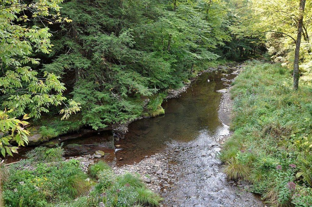 Cedar Run in Pennsylvania