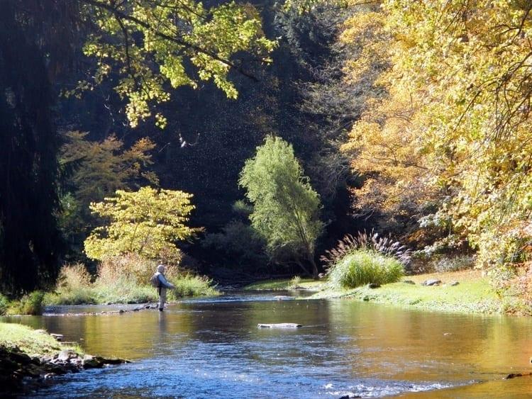 spruce creek in pennsylvania