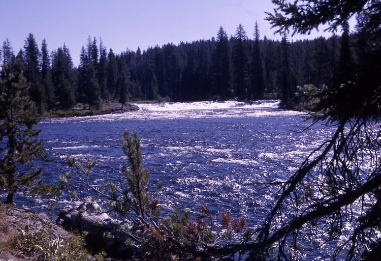 Fall River in Yellowstone National Park