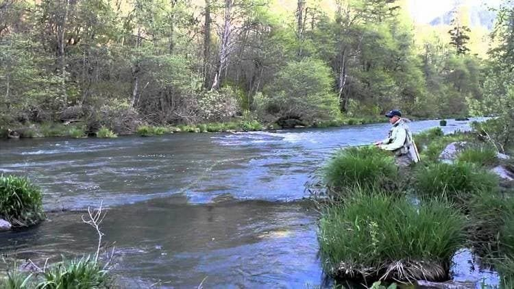 fly fishing Pit River in Northern California