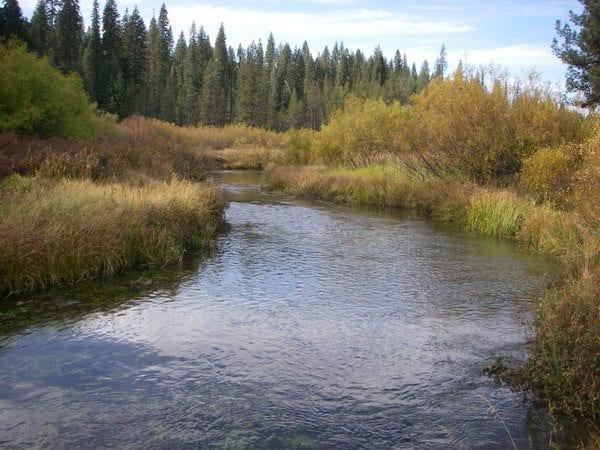 Yellow Creek, Plumas County, California