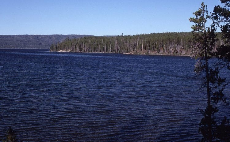 Shoshone Lake in Yellowstone National Park
