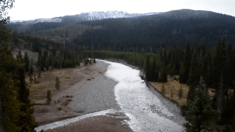 Snake River in Yellowstone National Park
