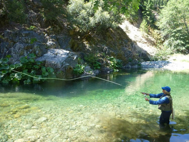 fly fishing the North Fork Yuba River in California