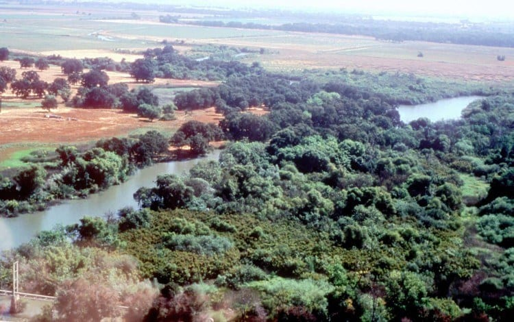 Cosumnes River in California