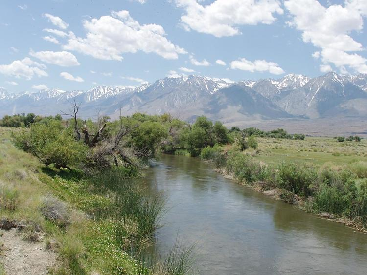 Lower Owens River in California