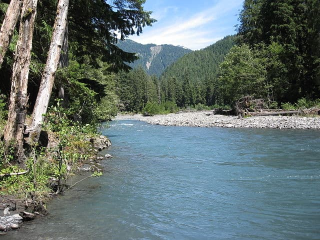 Queets River in Olympic National Park