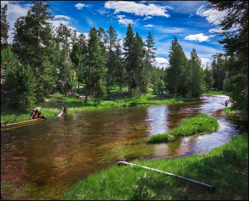 Firehole River in Yellowstone National Park